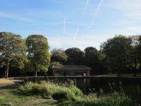 Middleton Park David 1