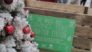 white-rose-giving-tree